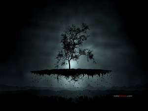 Tree levitating in the dark