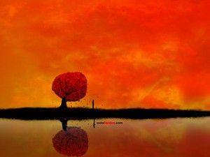 Tree in a landscape red