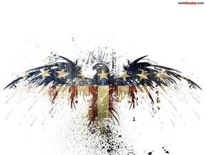 Eagle with United States flag
