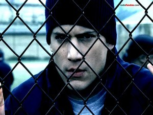 Prison Break: Michael Scofield in Fox River