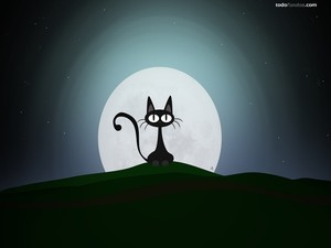 Cat to the Moon light
