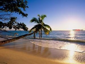 Beach Silhouette Island (Seychelles)