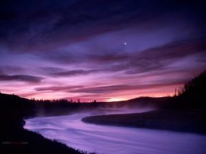 Madison River (on its way through Wyoming)