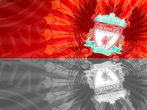 Liverpool FC Shield