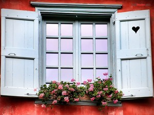 The window of love