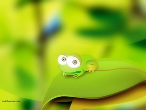 Green little frog of big eyes