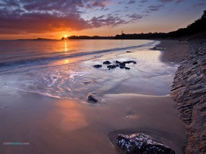 Kohimarama Beach (Auckland)