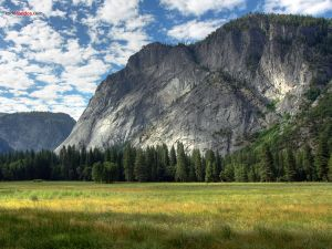 Meadows in Yosemite Valley (California)
