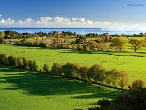 Golden Bay (New Zealand)