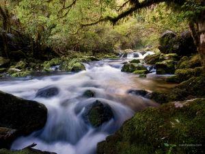 Riwaka River (New Zealand)
