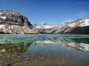 Bow Lake (Alberta, Canada)