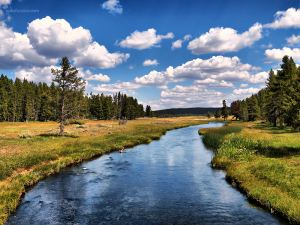 A beautiful landscape in Yellowstone National Park