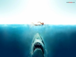 Jaws (the film)