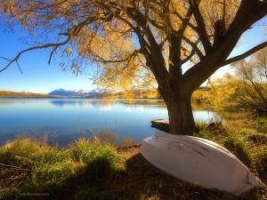 Lake Alexandrina (New Zealand)