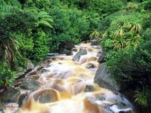 Waterfalls in Karamea River (New Zealand)