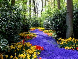 Flower River