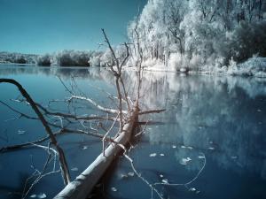 Calm gray landscape