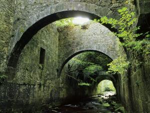 Aezcoa Valley (Navarra, Spain)