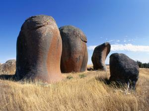 Stones with curious forms