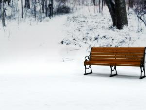A bench in the snow