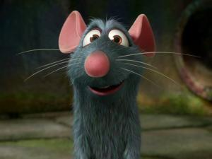 Nice Ratatouille