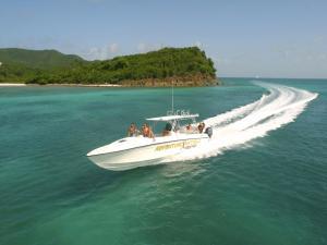 Quick motorboat