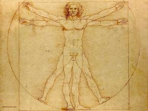 The Vitruvian Man, by Leonardo da Vinci