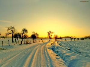 Snowy road at dusk
