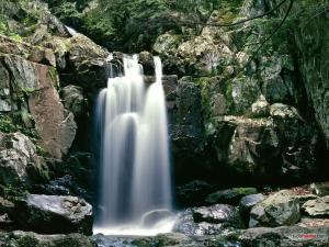 Shenandoah National Park (Virginia)