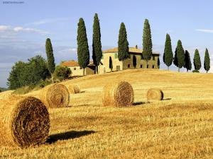Tuscan Landscape (Italy)