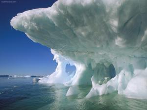 Petermann Island (Antarctica)