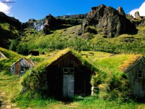 Green covered rooftops (Iceland)