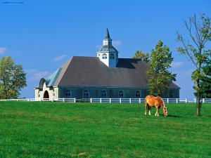 Horse farm (Lexington, Kentucky)
