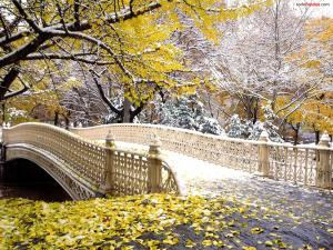 Autumn in Central Park, New York