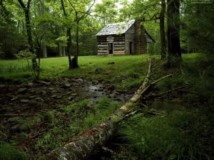 Cabin in Cades Cove, Great Smoky Mountains National Park (Tennessee)
