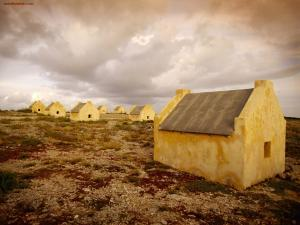 Salt flats in Bonaire Island