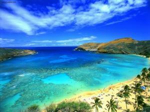 A paradisiacal beach