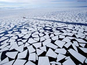 Broken ice plaques