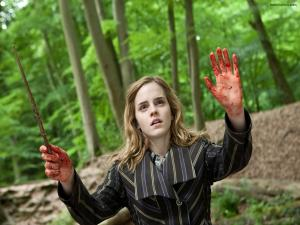 Hermione Granger in Harry Potter: The Deathly Hallows