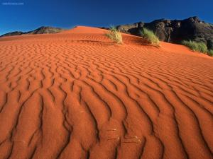 Red sands of the desert