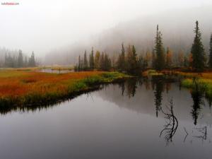 Landscape painted