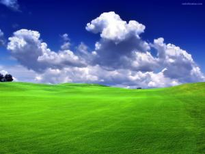 Clouds over a green meadow