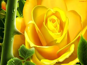 Yellow digital rose