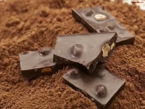 Chocolate with hazelnuts over chocolate powder