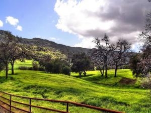 Green pasture farm