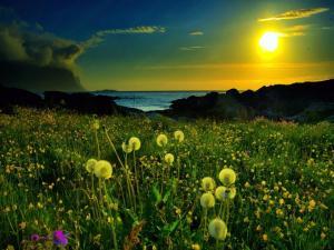 Yellow light of the Sun