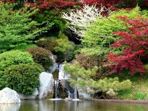 Waterfall among trees of various colors
