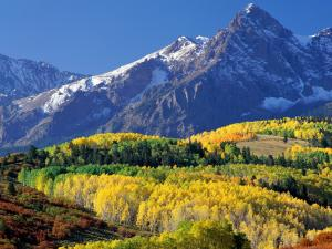 Colorful trees at the foot of the mountains