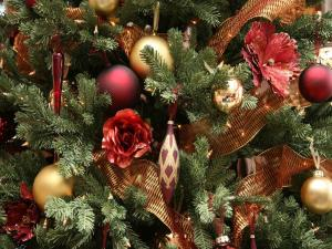 Ornaments of a Christmas tree