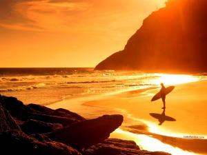 Golden beach by sun